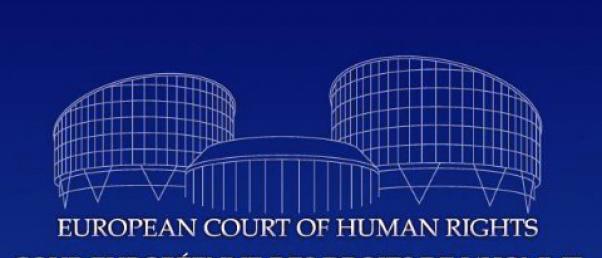 CEDH – affaire Paradiso: débat grave à la Grande Chambre et manifestation de No maternity traffic contre la vente d'enfants par gestation pour autrui